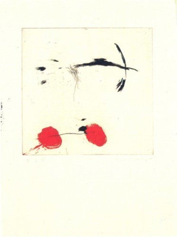 Joseph RIERA I ARAGO - Grabado - Avió petit rodes vermelles