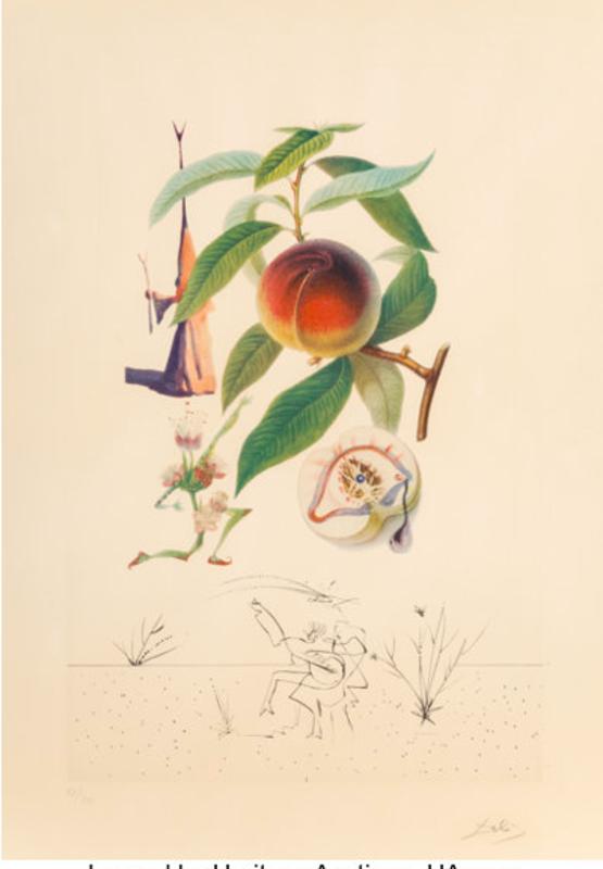Salvador DALI - Estampe-Multiple - Peach