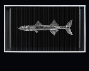Mauro CORDA - Sculpture-Volume - Barracuda