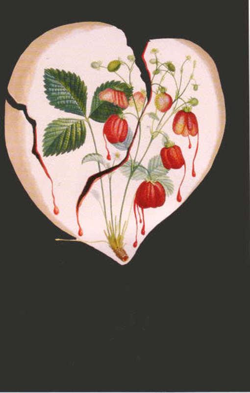 Salvador DALI - Estampe-Multiple -  Cour  de  Fraises Strawberries