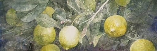 Pedro CANO - Gemälde - Limones II