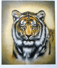 Martin Gilbert KATON - Print-Multiple - Exotic Cats of the World