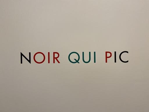 Jérôme CONSCIENCE - Druckgrafik-Multiple - Noir qui pic