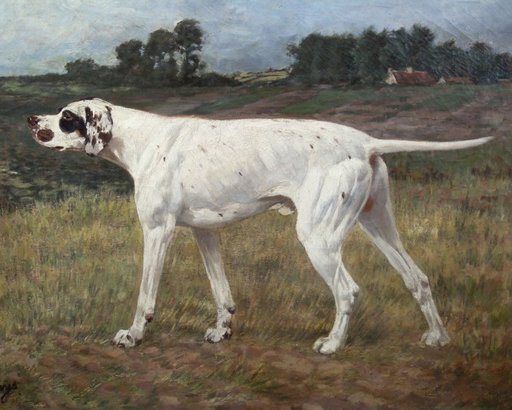 Alexandre CLARYS - Pintura - german short haired pointer hunting dog