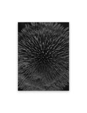 Seb JANIAK - Photo - Magnetic Radiation 99 (Medium)
