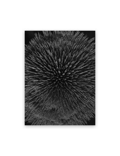 Seb JANIAK - Fotografia - Magnetic Radiation 99 (Medium)