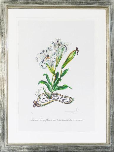 萨尔瓦多·达利 - 版画 - Lilien der Zeit - Lilium Longiflorum vel tempus molliter eva