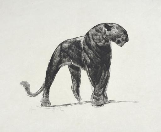 Paul JOUVE - Grabado - Panthère noire