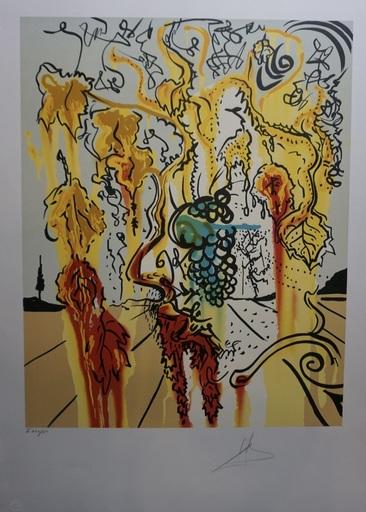 Salvador DALI - Grabado - Portrait of Autumn