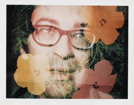 "Brigid POLK - Photo - ""Flowers 1970"""