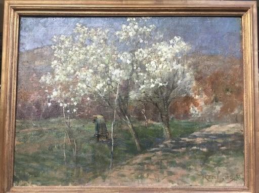 Romeo PELLEGATA - Painting - Ciliegi in fiore