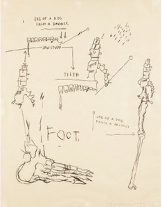 Jean-Michel BASQUIAT, Leg of a Dog