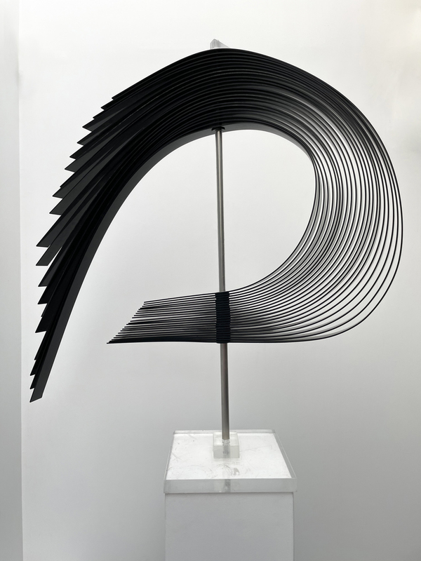 Jean-Paul BOYER - Sculpture-Volume - Voiles noires 6
