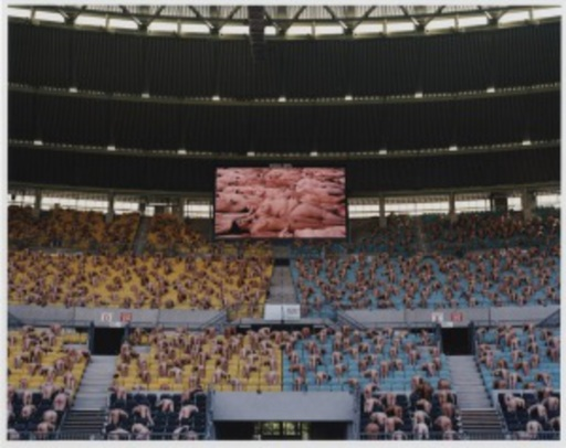 Spencer TUNICK - Photography - Austria 1 (Ernst Happel Stadion)