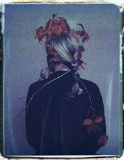 ELIZERMAN - Photography - Autumn faun