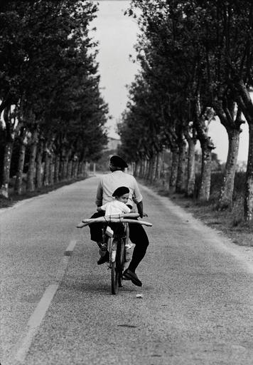 Elliott ERWITT - Fotografie - Provenza, Francia