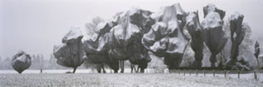 CHRISTO - Photography - Wrapped Trees in Riehen / Basel  (1998)