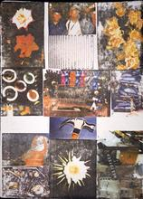 Robert RAUSCHENBERG - Estampe-Multiple - Charms against Harms