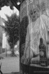 Twan VAN DEN BOS - Photography - ATW 16072019-11.00    (Cat N° 6684)