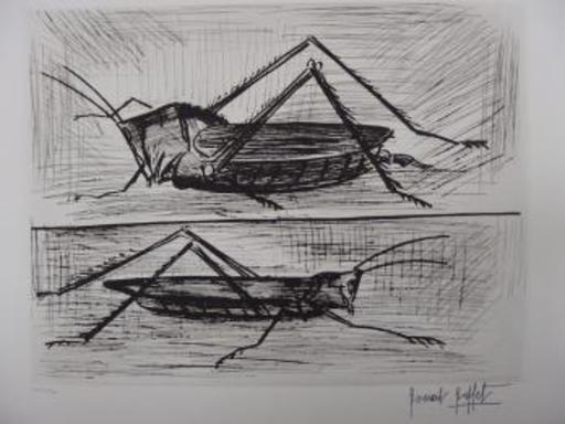 Bernard BUFFET - Grabado - Insects : Locust and grasshopper
