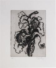 William KENTRIDGE - Stampa Multiplo - Iris