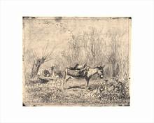 Charles François DAUBIGNY - Print-Multiple - l'Ane au Pré