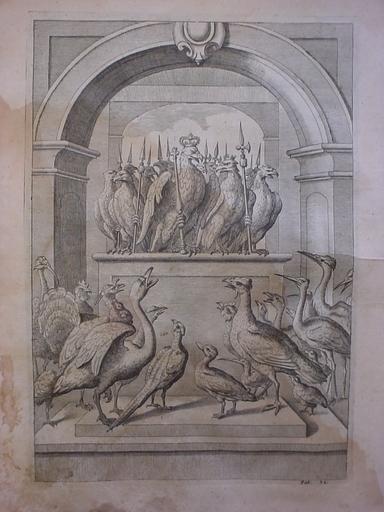 Wenceslaus HOLLAR VON PRACHNA - Print-Multiple - Birds