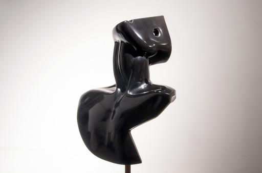 Daniele GUIDUGLI - Sculpture-Volume - BLACKBODY