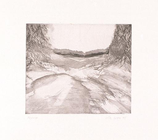 Lutz WOLF - Grabado - Landschaft