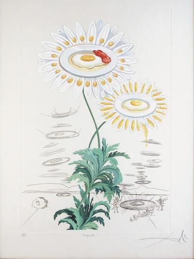 Salvador DALI - Print-Multiple - Flora Dalinae Chrysanthemum