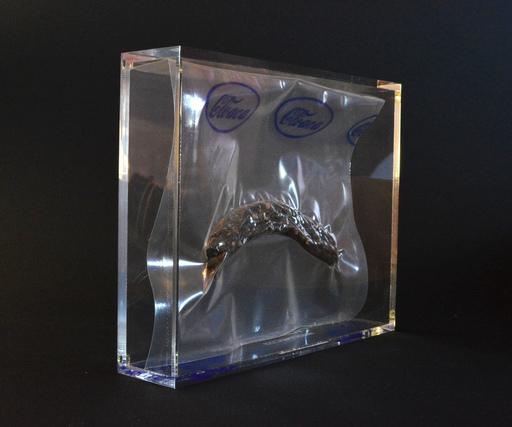 Wim DELVOYE - Skulptur Volumen - Cloaca
