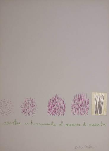 Eliseo MATTIACCI - Druckgrafik-Multiple -  Assistere intensamente al processo di crescita
