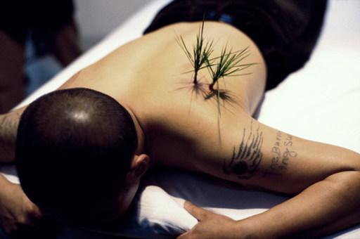 HWANG Dennis - Fotografia - Planting grass
