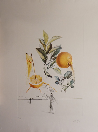 Salvador DALI - Estampe-Multiple - FlorDali/Les Fruits Grapefruit