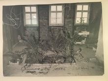 Anselm KIEFER (1945) - Geheimnis der Farne