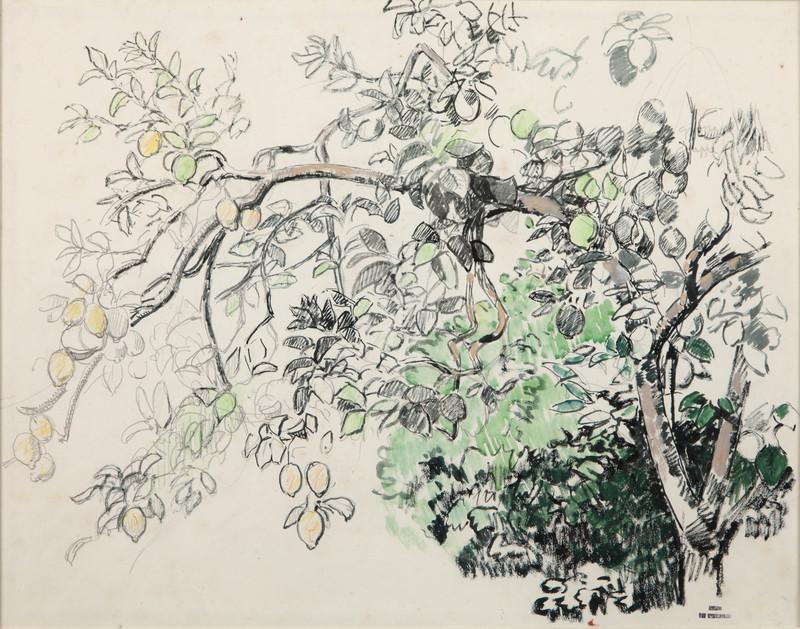 Théo VAN RYSSELBERGHE - Drawing-Watercolor - Citronniers à La Mortola