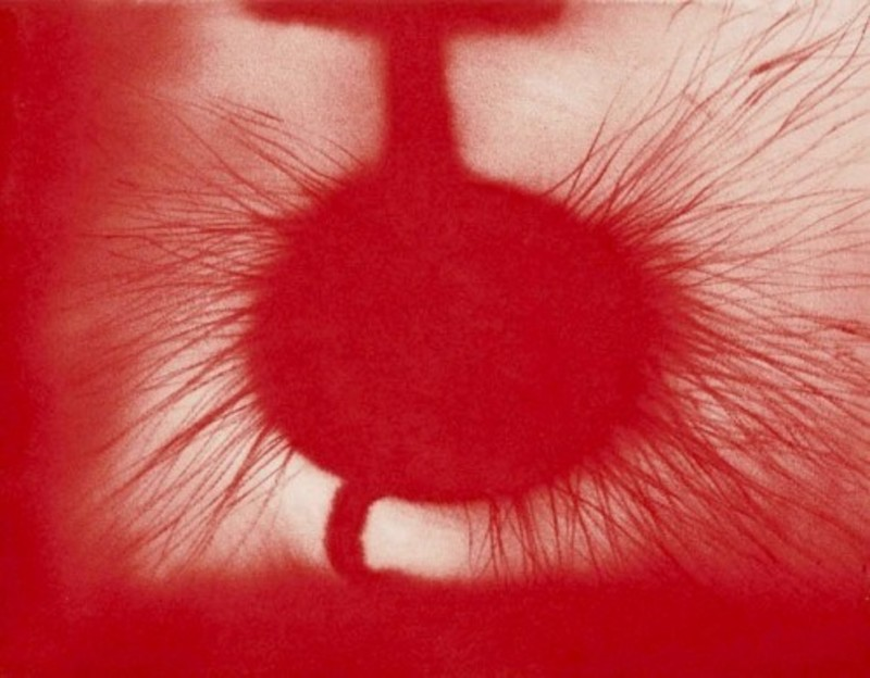 Anish KAPOOR - Stampa Multiplo - Untitled