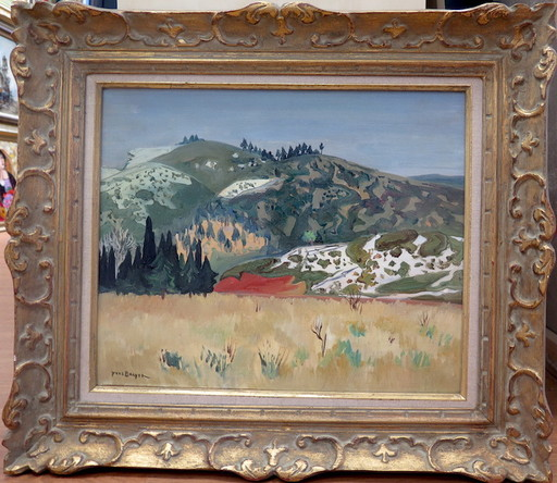Yves BRAYER - Pintura - Paysage des Alpilles