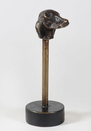 Diego GIACOMETTI - Scultura Volume - Tête de chien montée sur socle