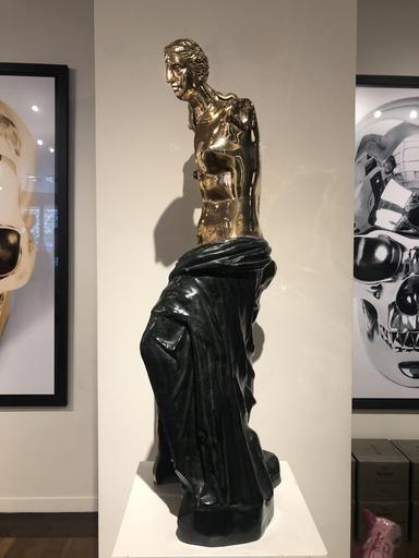 阿尔曼 - 雕塑 - Vénus machine à coudre