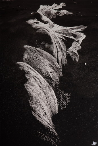 Olivier ATTAR - Fotografie - Sirene