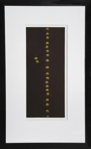 Yozo HAMAGUCHI - Stampa Multiplo - Twenty-Two Cherries (Green)