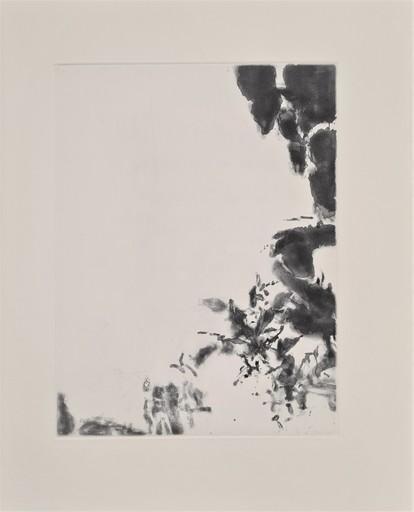 ZAO Wou-Ki - Print-Multiple - XXIV Sonnets de Shakespeare