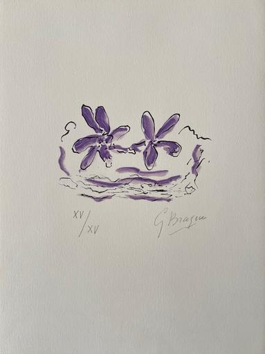Georges BRAQUE - Print-Multiple - Deux fleurs violettes