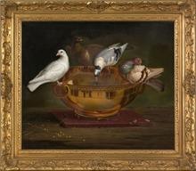 Johann Wenzel PETER - Gemälde - Pigeons Drinking from a Bowl