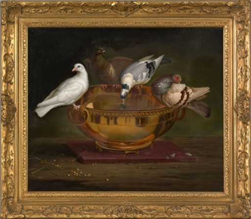 Peter WENZEL - Painting - Pigeons Drinking from a Bowl