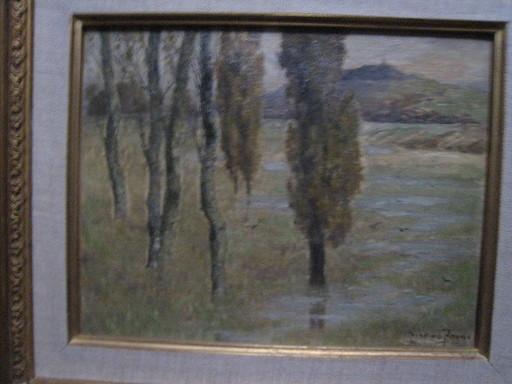 Pierre Ernest PRINS - Peinture - APRES LES GRANDES EAUX  1897