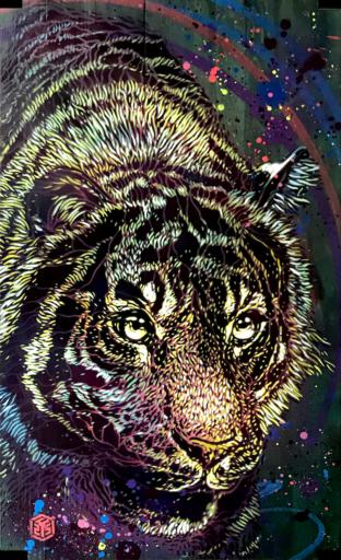 C215 - Painting - Tigre