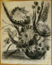 "Jules CAVAILLES - Disegno Acquarello - ""GRAND BOUQUET DE CHARDONS"""