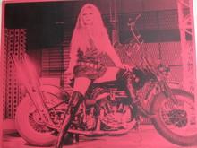 Russell YOUNG - Pintura - *Brigitte Bardot, pink